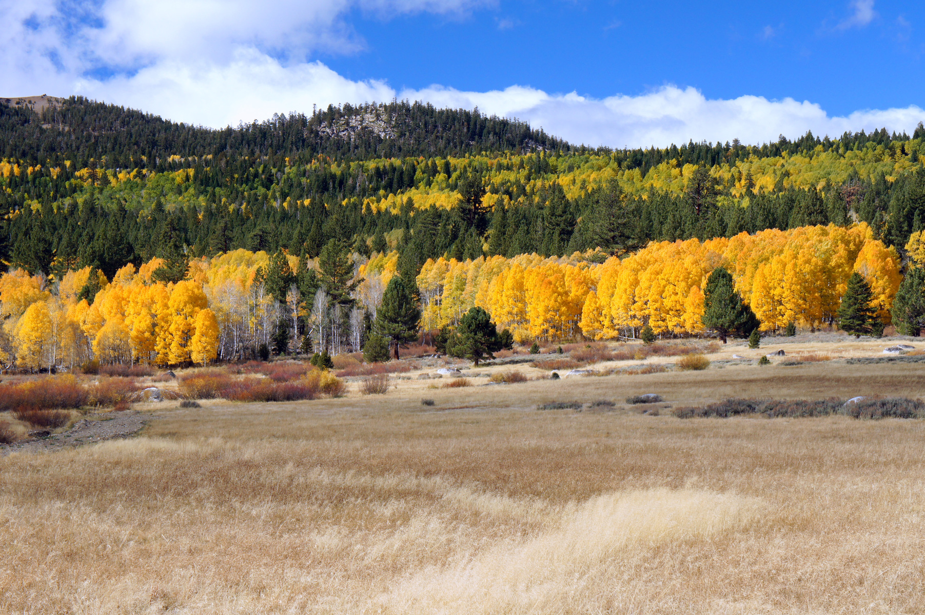 south of Lake Tahoe, California